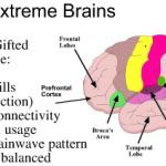 Extreme Brains