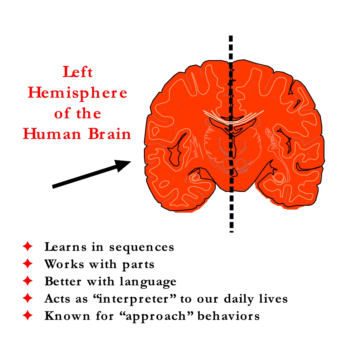 a look at brain based learning Play, learning and the brain 3 are there any problems with adopting brain-based approaches to education take a look at all open university courses.