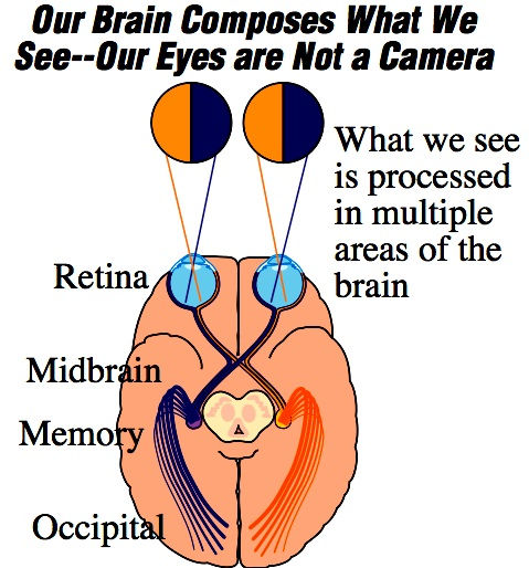 Brain Based Learning Brain Based Experts Brain Based Images You