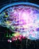 brain based learning myths